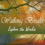 rsz_walking_break_widget