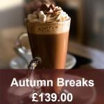 Autumn Breaks Widget2